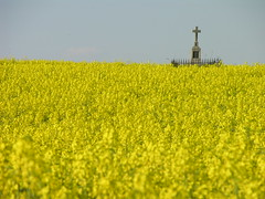 Výherce loňského závodu alergiků na pyl