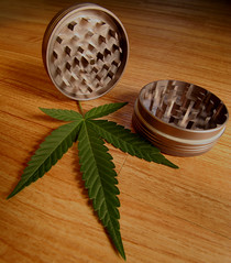 Space Case Marijuana Grinder (Professional Recreationalist) Tags: green bag ma j stash weed fattie jay russell tea outdoor smoke bob indoor pot hydro shit oil thc shake mayo gram bud dope brucedean professionalrecreationalist marijuana roach titanium skunk doobie pound hash blunt homegrown herb sneaky maryjane cannabis joint medicinal chronic nard tar lid reefer hooter sativa hemp hashish charas spacecase marihuana ganja muggles trimmings pinner splif ounce indica locoweed bcbud twistie bhang gatewaydrug kannabis puttyhash mafen gigglestick titaniumgrinder spacecasegrinder spacecasedriedmarijuanagrinder