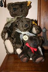 3 X BROWN BEARS (MAD MUMMY) Tags: three ebay teddy bears collection steiff boyds myteddybear