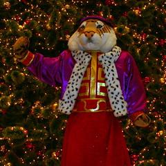 Christmas_Tiger_01 (dcsaint) Tags: art nikon nikoncoolpix995 e995