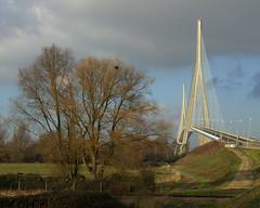 Reaching the Sky (brun_o) Tags: road bridge light sky france tree architecture clouds landscape pont honfleur normandy pylone