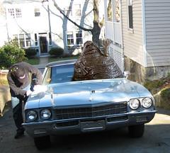 Cleaning at the Saraceno's (M.J.H.) Tags: buick convertible blob 1972 skylark chet weirdscience