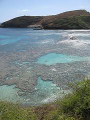 Hanauma Bay (kellyroth1) Tags: hawaii hanaumabay