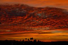 Sky Harbor sunrise