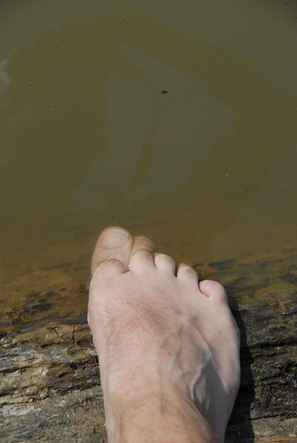 My Foot in the Amazon
