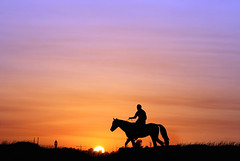 Start of the Day (hamad M) Tags: morning blue horse orange color nature silhouette yellow sunrise canon landscape interestingness 100mm arab kuwait q8 beautifulearth supershot xti 400d canoneos400d 30faves30comments300views impressedbeauty flickr333