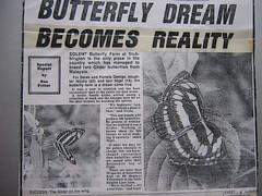 Butterfly farm 1983