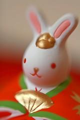 (mio-spr) Tags: macro rabbit japan closeup zeiss eos 50mm bokeh  reverse objet 2007 planar    kissdx