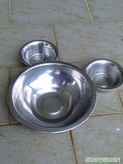 cat water bowls