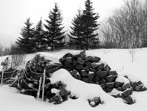 Woolaver's woodpile