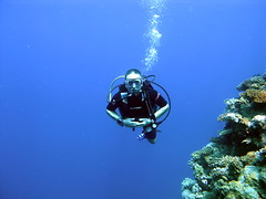 Richie (r_sgreathurst) Tags: red sea diving jeddah