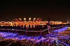2007台灣燈會在嘉義068