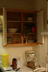 OK Fine (CM Sims) Tags: cats animals nc canon300d kittens felines nophotoshop emory dslr digitalrebel boone