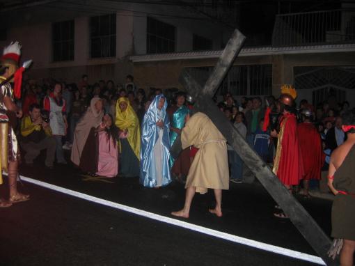 crucis16