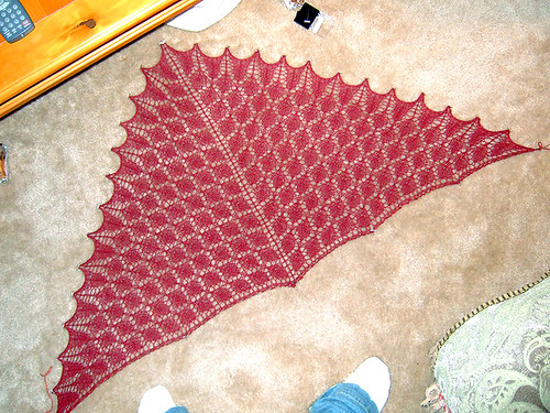 Forest Canopy Shawl 2