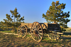 Historic Wagon (Thad Roan - Bridgepix) Tags: statepark wood blue sky sunlight wagon colorado historic evergreen chatfield pinetrees wagonwheel littleton 200704 slocumcabin