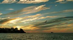 Dinard - last Summertime Sunset