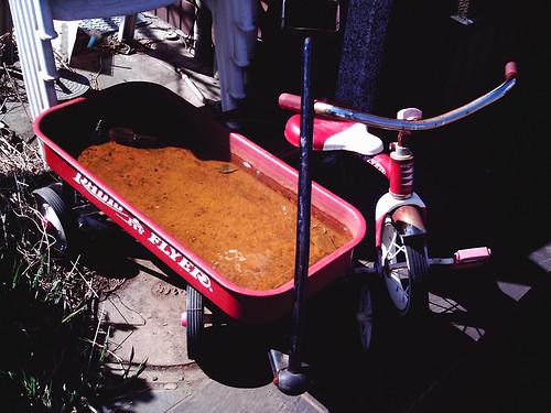 錆びた三輪車