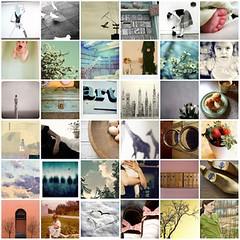 mosaico flickr