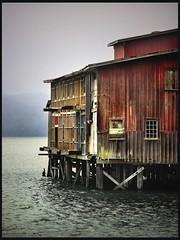 old cannery (jody9) Tags: abandoned topf25 oregon bravo stormy columbiariver astoria decayed cannery bigred abigfave goldenphotographer wowiekazowie diamondclassphotographer flickrdiamond