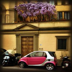 the purple cloud (vanvos) Tags: pink bravo firenze p1f1 superbmasterpiece