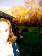 orange (wensdayswewearpink) Tags: orange sun tree greengrass