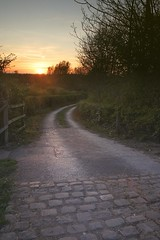 Lane at sunset (formerly_of_devon) Tags: road sunset rural cheshire hedge lane countyside poynton highlane