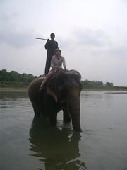 Chitwan 9 April - (112)_2