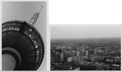 the/from (---m---) Tags: blackandwhite bw panorama berlin germany fernsehturm tvtower deutschetelekom invitedby