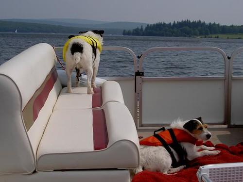 bastardsonaboat