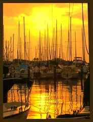3 Saint Petersburg FL (Jen's Photography) Tags: marina saintpetersburg florida manipulated contrast tinted orange boats searchthebest explore interestingness nikon scout fdsflickrtoys jensphotography bighugelabs city urban