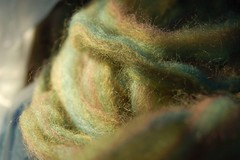 Green Roving