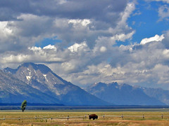 Timeless.... (Jeff Clow) Tags: mountains nature usa vacation grandtetonnationalpark wyoming grandtetons 1025fav topv111 sorryevaluation topc50 topf25 bravo