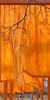 seeing thru (d.calder) Tags: gatesmemory