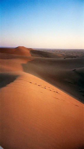 Dunes in the desert near Dubai by Bruno Girin.