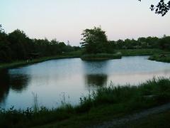 Forellenangeln in Dnemark (1) (Yogi 58) Tags: lake nature denmark see fishing natur dnemark angeln troutfishing yogi58 forellenangeln jrgsteiof steiof