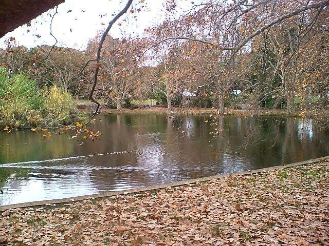 Hyde Park3