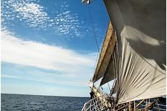 Bowsprit of Sørlandet and open sea (Bruno Girin) Tags: sørlandet tallships sea sails bowsprit blue sky