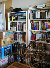 Bookcases with Guardian