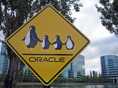 Linux Crossing (psd) Tags: california family usa signs cute sign penguin penguins oracle crossing meeting workshop bayarea w3c tux redwoodshores schemaexperiences dilojun05 dilojune05 fourpenguins