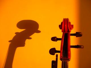 shadowplay cello