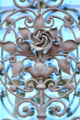iron rose (Blackwings) Tags: iron rose bonn window
