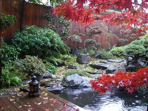 Autumnal rain