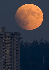 Lunar Eclipse 2005 (Mark Klotz) Tags: light sky moon canada beautiful eclipse amazing bc burnaby harvestmoon rare lunareclipse actualsize burnabylake klotz markklotz