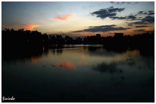 Sunset - Parque do Ibirapuera