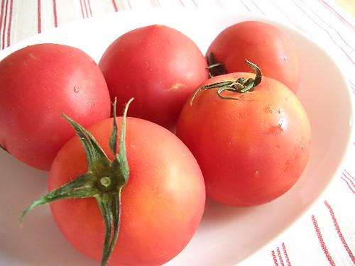 トマト │ 食べ物 │ 無料写真素材