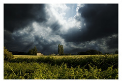 Newton-Le-Willows, Merseyside (craig_352) Tags: uk deleteme5 light england storm field yellow clouds dark landscape europe savedbythedeletemegroup cloudy farm topv1111 been1of100 interestingness1 thunderclouds saveme11 topc150 craig352 flickys excellenceincinematicphotography thebestcapturegroup