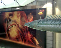 Flying Fish Kissing a Wookie @ Waterloo Station, London (steeev) Tags: uk greatbritain england hairy fish london geotagged starwars furry funny eurostar britain terminal waterloo chewie wookie chewbacca se1 fishy waterloostation flyingfish steeev geo:lat=51503423 geo:lon=0114069