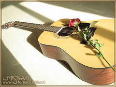 GuiTaR (Miss Art) Tags: red music rose play guitar redrose sound lovely musicalinstrument