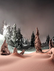 creamy (Vida Morkunas (seawallrunner)) Tags: snow night snowshoe interestingness utata seymour cwall beammeup interestingness54 nightphotographyproject i500